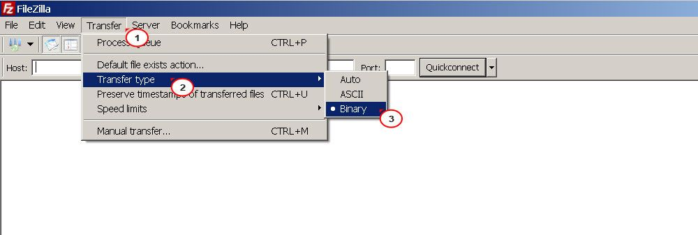 How to set Binary transfer mode in FileZilla