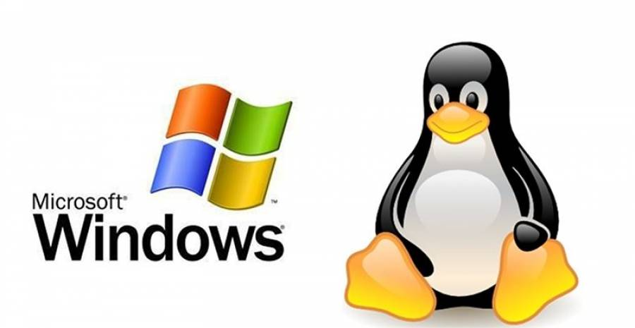 Windows or Linux Hosting